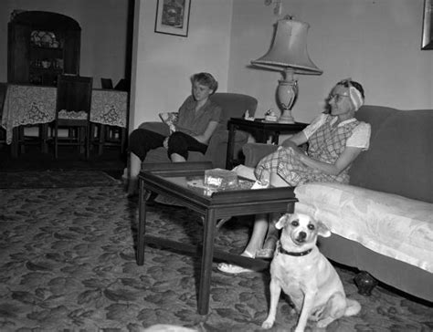 the living room war the rise and fall of housewife politics thirdsight history