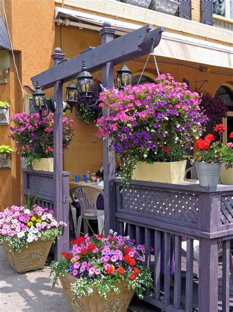 hanging window flower boxes 128 best images about hanging flower baskets on
