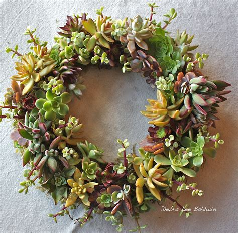 succulent wreath tips and ideas from debra lee baldwin