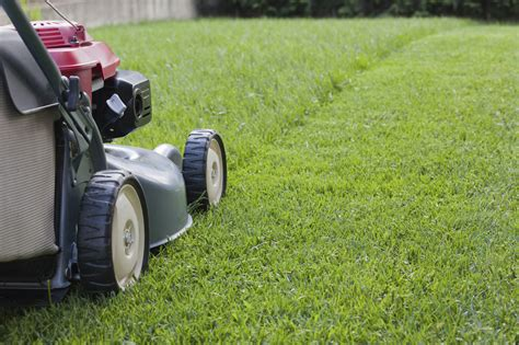 lawn care mowing for a healthier lawn engledow group