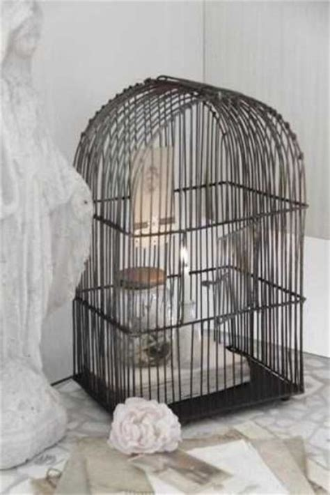 home decor bird cages using bird cages for decor 66 beautiful ideas digsdigs