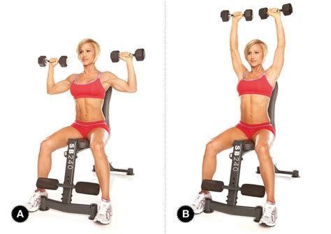 seated shoulder dumbbell press inspiration seated dumbbell press