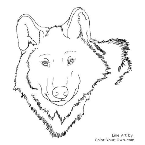 coloring page wolf head free coloring pages of wolf head
