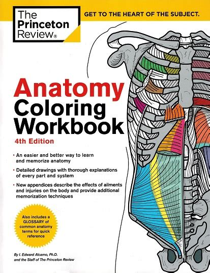 anatomy coloring book ce credits radiographic pathology x