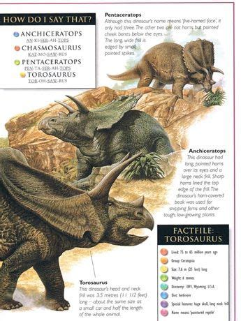 fossil by fossil comparing dinosaur bones books 98 best images about books dinosaurs fossils etc on