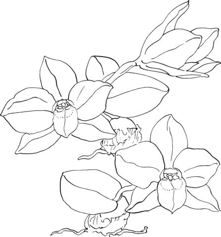 Fr/free Printable Coloring Pages For Teenagers » Ideas Home Design