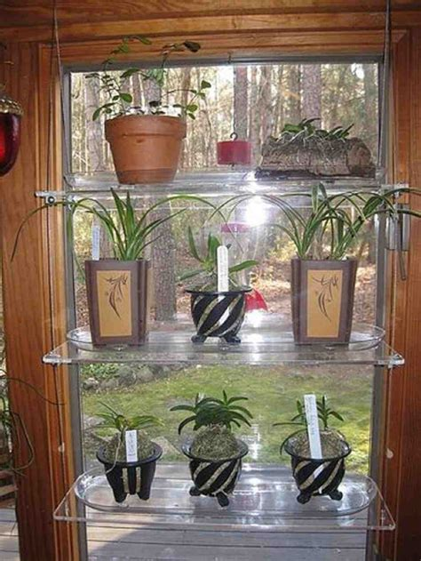 glass window shelves  plants decor ideasdecor ideas