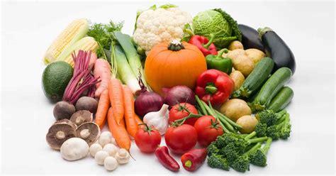 vegetables that are for dogs highedge tibetan mastiffs
