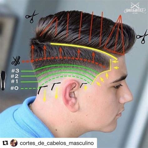 Fade Haircut Diagram   Hairs Picture Gallery