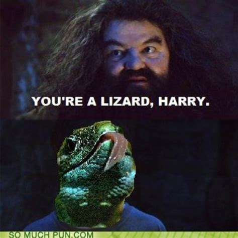 You Re A Wizard Harry Meme - image 224209 you re a wizard harry know your meme