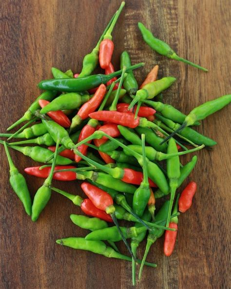 spices unearthed chili pepper season with spice
