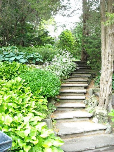 stairs for the hill in the backyard my love affair