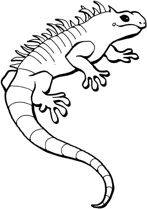 coloring page lizard free lizard coloring pages