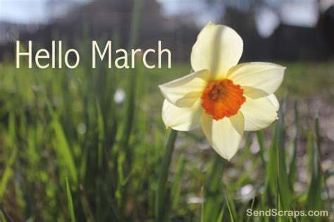 top  march images   pictures  whatsapp sendscraps