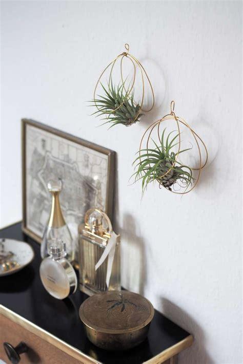 diy luftpflanzen halter aus draht paulsvera