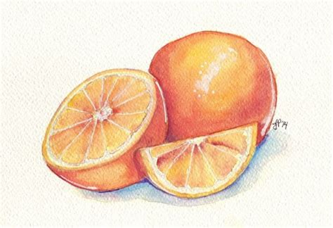 oranges still watercolor painting orange fruit slice original watercolor painting 6x9