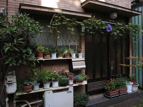 Japanese Container Garden - 27 best images about japanese container gardens on pinterest gardens container gardening and