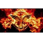 2016 The Hunger Games Mockingjay Part 2 4K Wallpaper