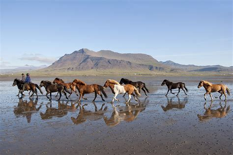 a s ride in iceland books ride across the stunning snaefellsnes peninsula in iceland