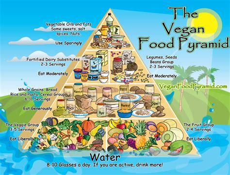 vegan treats vegan food pyramid feeding your veggie