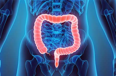 Blood In Stool Test Detects Colon Cancer Symptoms by Non Invasive Test To Rule Out Colorectal Cancer Could