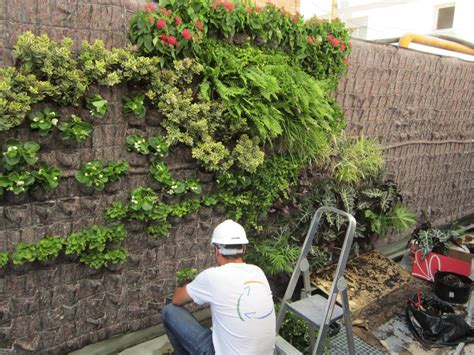 imagenes de como hacer jardines jard 237 n vertical
