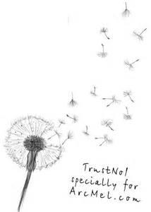 how to draw a dandelion step by step arcmel com