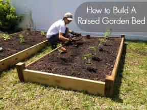 how to build elevated garden beds home garden design