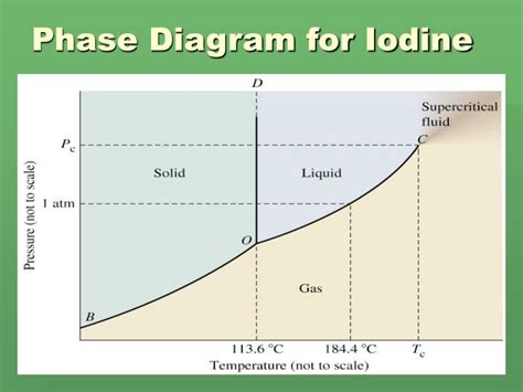 phase diagram of ppt phase diagram powerpoint presentation id 1824152