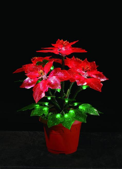 christmas flower imd 001 china christmas flower led
