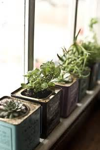 Window Herb Garden by Gallery For Gt Indoor Window Herb Garden Ideas