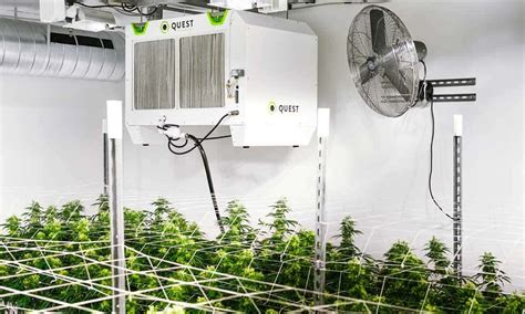 grow room dehumidifier what s the best grow room dehumidifier for your setup 183 high times