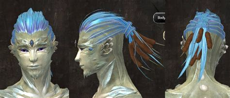 Gw2 Hairstyle Kits by Dulfy Gw2 Hairstyles Gw2 New Hairstyles From Total