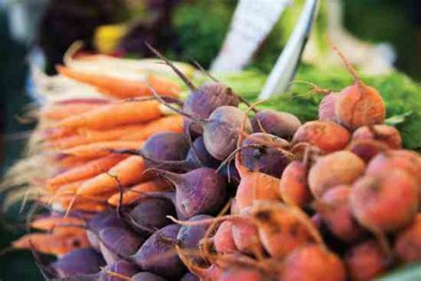 pictures of root vegetables a guide to root vegetables food and recipes