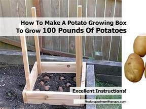 how to make a potato growing box to grow 100 pounds of