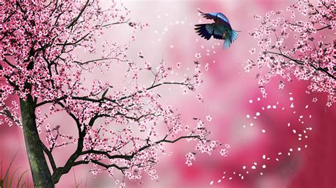 gmail themes pink bird flying in spring full hd wallpaper and background
