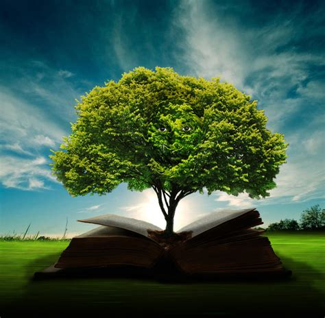 of wisdom insirational tree of knowledge quotes quotesgram