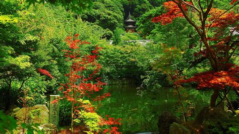 beautiful gardens beautiful kyoto gardens japan world for travel