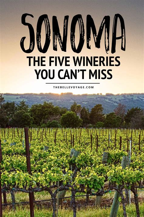 best wines california top 5 wineries to visit in sonoma california the