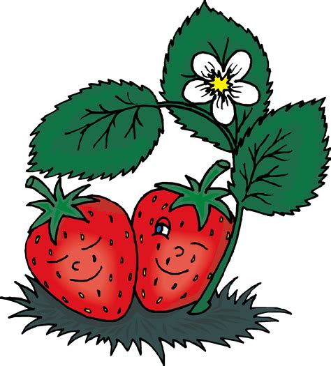 strawberry clipart strawberry clip art free clipart images 2 wikiclipart