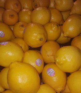 Shelf Of Lemons by What Is The Shelf Of A Lemon Baltimore Post Examinerbaltimore Post Examiner