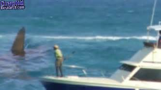 boat show 2017 south africa caught on tape 2017 south africa monster megalodon shark