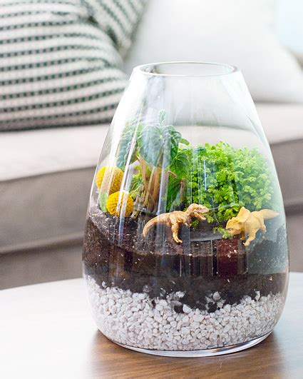 Nashville Home Decor Stores by Dino Battle And Building A Terrarium