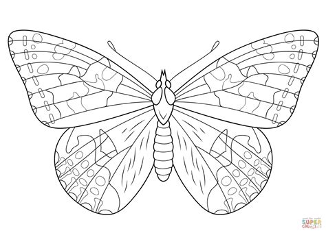 butterfly color pages butterfly outline coloring page coloring home