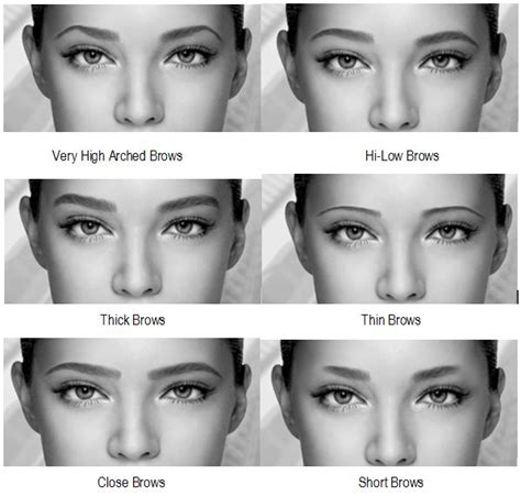 Get Your Best Faceliterally by Here S How To Get The Best Eyebrows For Your Shape