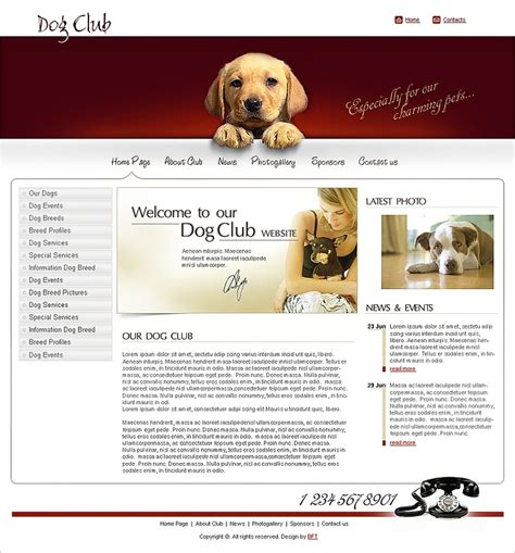 Free Dog Club Website Template Free Club Website Templates