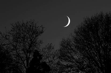 imagenes oscuras de fondo l effet papillon la sonrisa de la luna