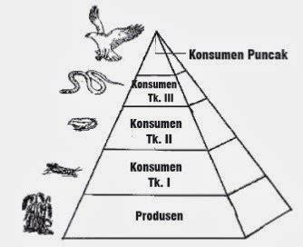 Piramid Putih piramida makanan hal 96 belajar kurikulum 2013