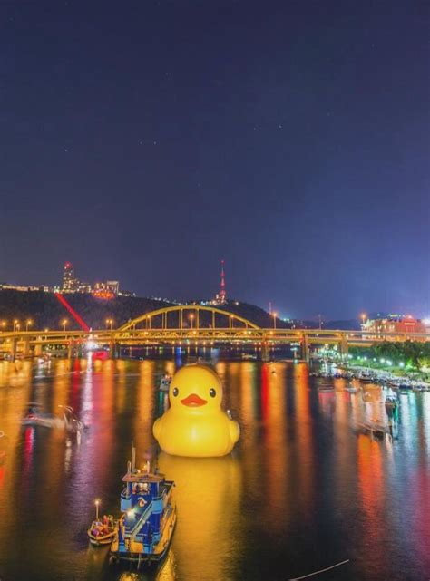 yellow pa 18 best images about pgh duck on american cities the words and new year s