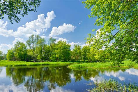 imagenes de arboles otoñales fondos de pantalla 3006x2000 fotograf 237 a de paisaje r 237 os